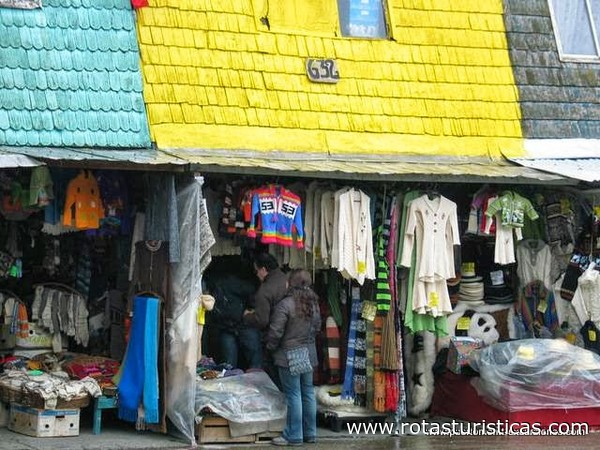 Private shore tours in Puerto Montt, Chile