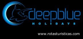 Deep Blue Holidays