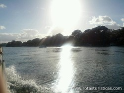 Scenic Boat Tour