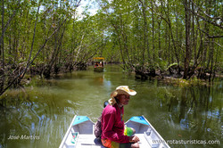 Paseo de Barco en el Mangue (Itacaré)