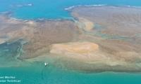 Passeio de escuna à Ilha e corais da Coroa Alta.
