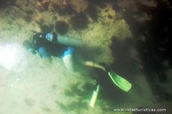 Buceo en los corales de Fernando de Noronha