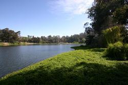 Laguna Sausalito