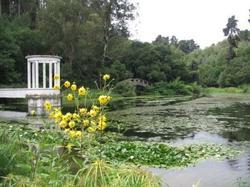 Jardin Botanico Nacional de Viña del Mar