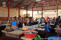 Mercado de peixe do Mindelo (Ilha de São Vicente)