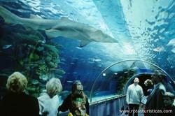Tropicarium - Oceanarium (Budapeste)