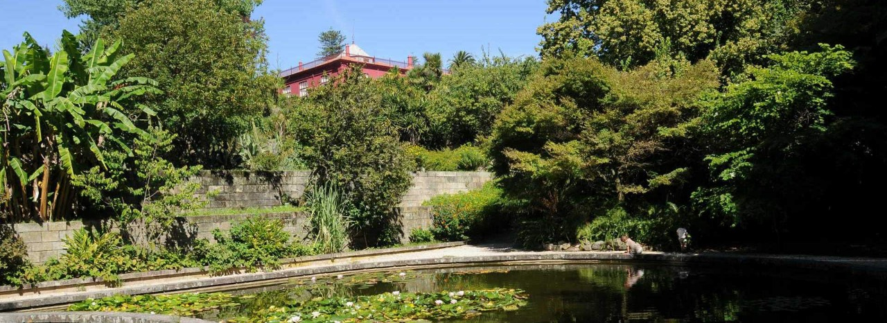 Botanical Garden of Porto