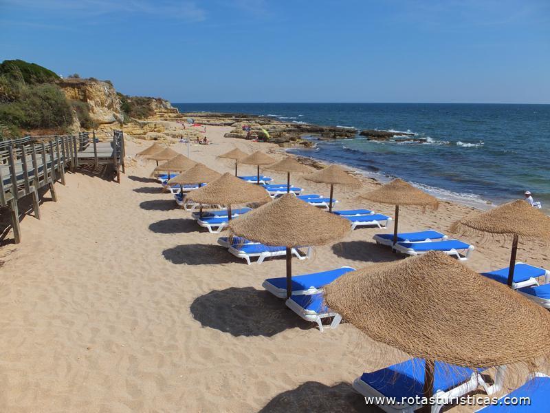 Praia do Lourenço