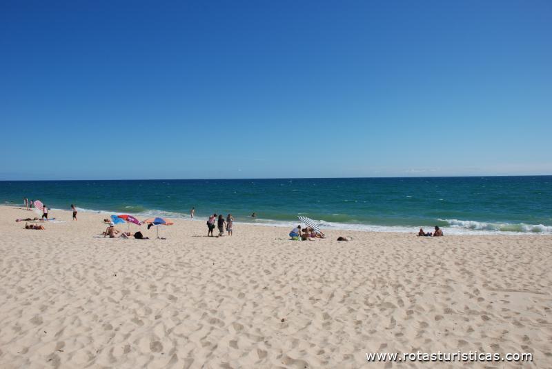 Praia da Ilha de Faro