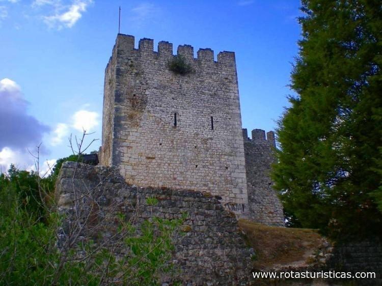 Castillo de Alcanede (Santarém)