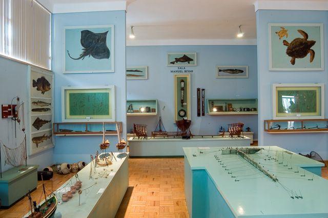 Museu Marítimo Almirante Ramalho Ortigão (Faro)