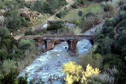 Old Bridge of Paderne