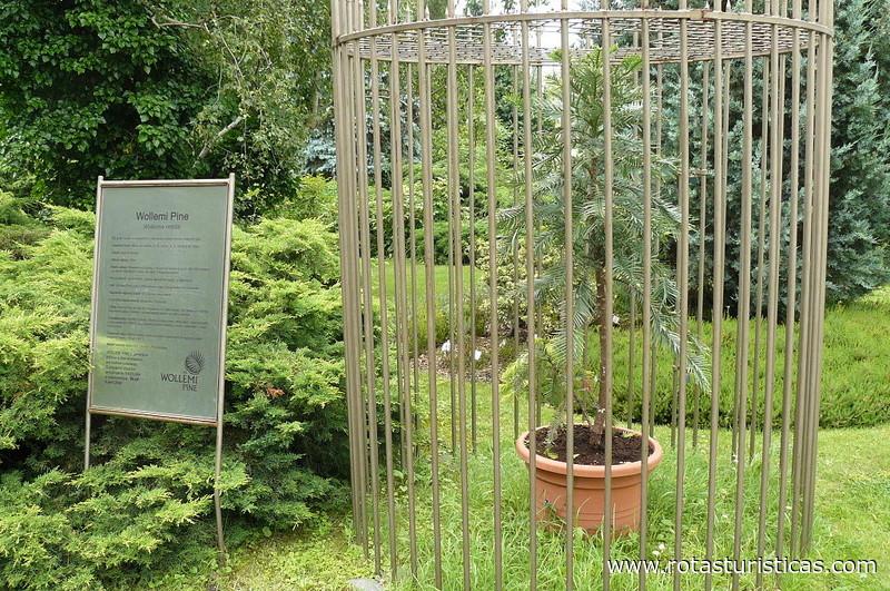 Botanical Garden (Bratislava)