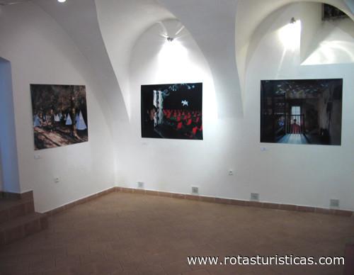 Gallery f7 (Bratislava)