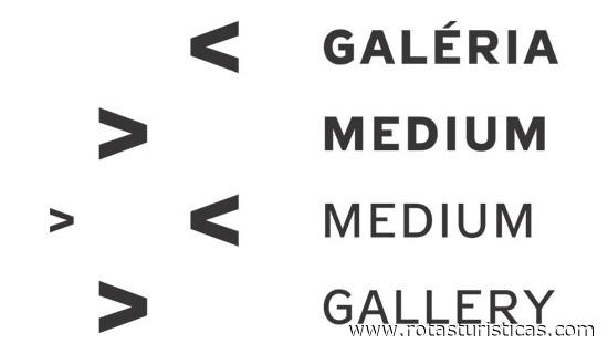 Gallery Medium (Bratislava)