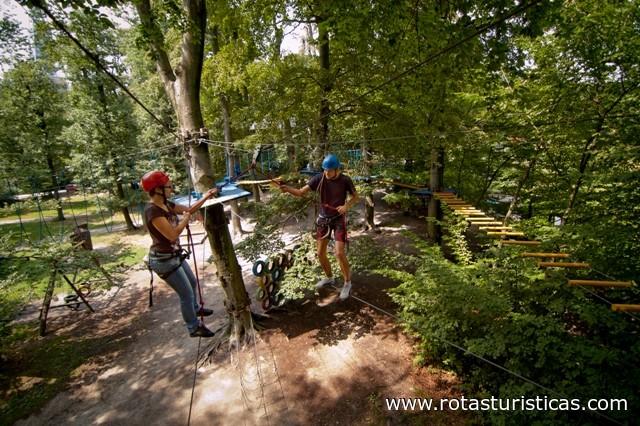 Rope Course - Lanoland (Bratislava)