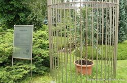 Jardín Botánico (Bratislava)