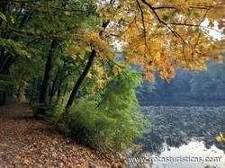 Parque Forestal de Bratislava (Bratislava)