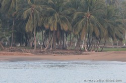 Beach Micolo (Guadeloupe)