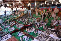 Mercado do peixe, Istanbul, Turkey