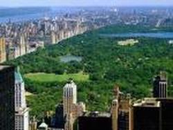 Central Park (Nova Iorque)